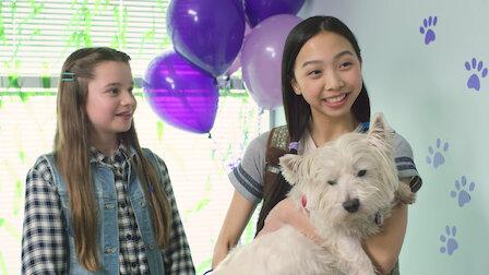 Watch Pet Adoption Day. Episode 5 of Season 2.